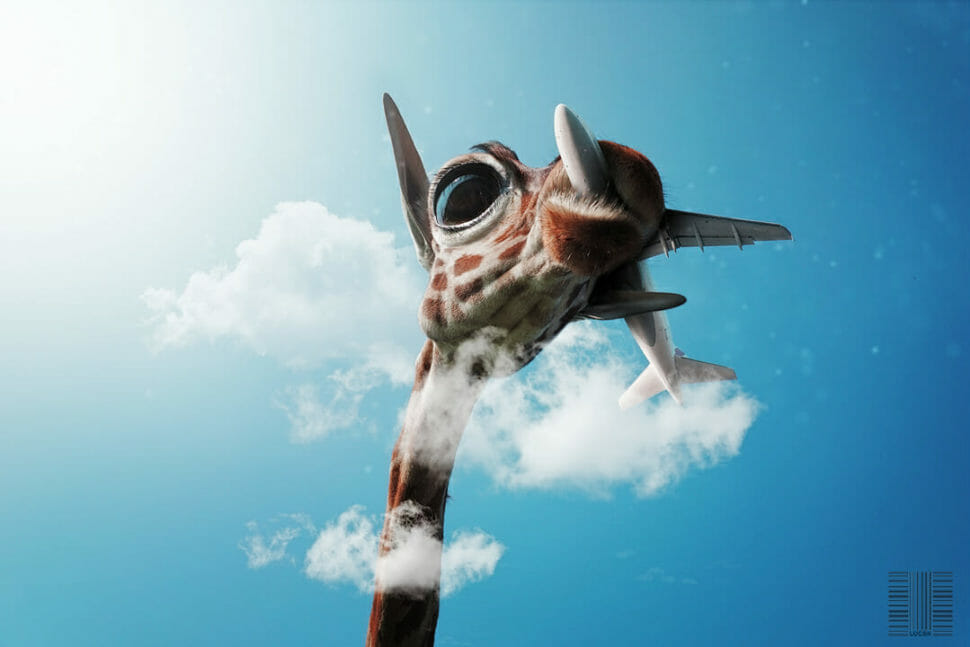 Coronavirus COVID-19 Sophie the giraffe has a plane in her mouth