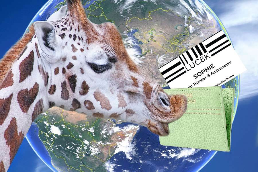 Sophie, the giraffe holds an elegant custom business card holder, behind her the a image from Google Earth Pro of the earth with clouds