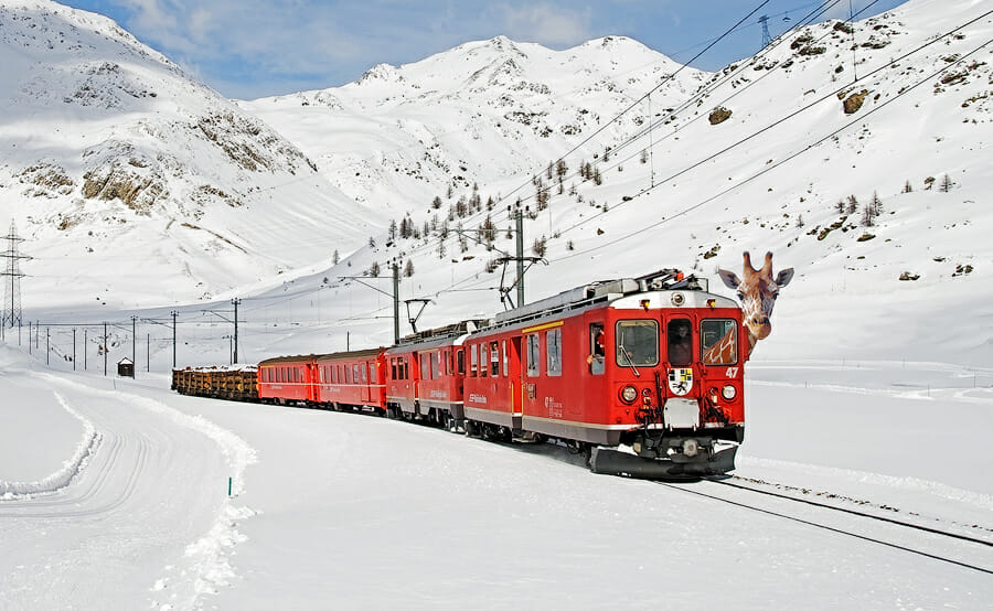 Sophie in Switzerland, riding a train through the alps full of snow in Switzerland
